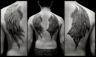 Angel & Devil wings