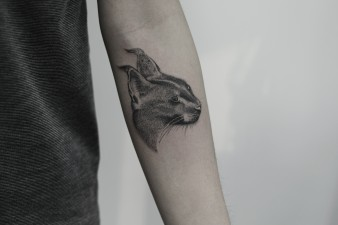 Caracal Cat Tattoo